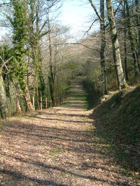 Sentier de grande randonnée 36